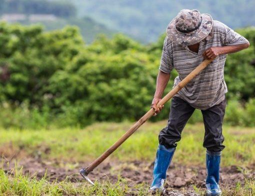 contagem de tempo rural para aposentadoria